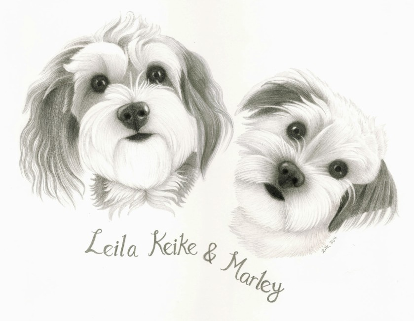 leila and marley for web